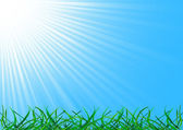 çim ile vektör arka plan — Stok Vektör