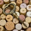 Stoppers and old corkscrew. — Stock Photo #1035397