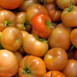 Tomatoes — Stock Photo #1043368