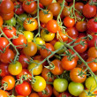 Stock Photo: Tomatoes cherry