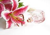 Aroma — Fotografia Stock