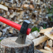 Stock Photo: Axe and fire wood