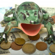 Frog on denominations. — Stock Photo