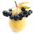 Stock Photo: Pear and black chokeberry.