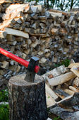 Axe and woodpile. — Stock Photo