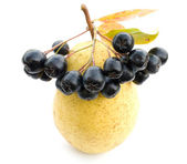 Pear and black chokeberry. — Stock Photo