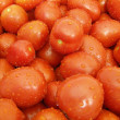 Tomatoes — Stock Photo #1015706