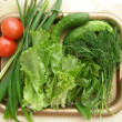 Verdure and vegetables on the tray — Stock Photo