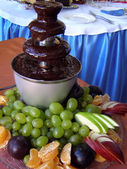 Dessert from the chocolate fountain — Stock Photo