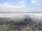 Salt lake with path of mud — Stock Photo