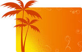 Orange background with palms — Stock Vector
