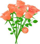 Vector bouquet of orange tea roses — Stock Vector