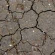 Royalty-Free Stock Photo: Cracks in dry ground.