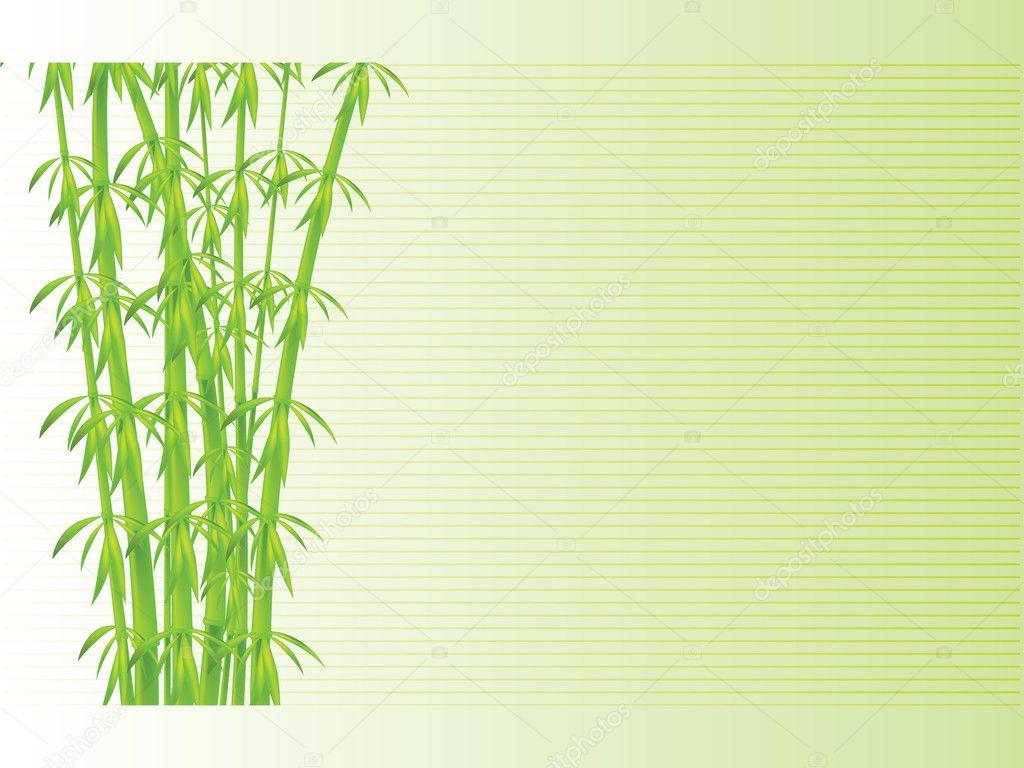 竹背景,矢量图— 照片作者