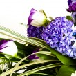 Stock Photo: Blue fuzzy (hyacinthus orientalis) bouqu