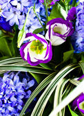 Blue fuzzy (hyacinthus orientalis) bouqu — Stock Photo