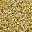 Herbs mixture — Stock Photo #2659210