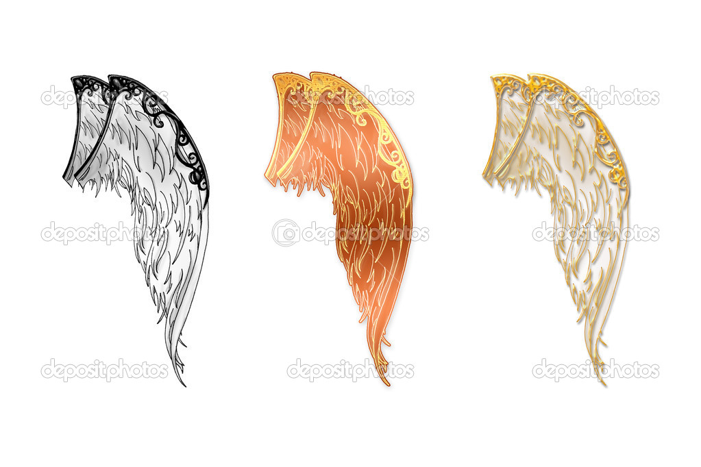 Angel wings located on a white background in three variants  Stock Photo #1066638