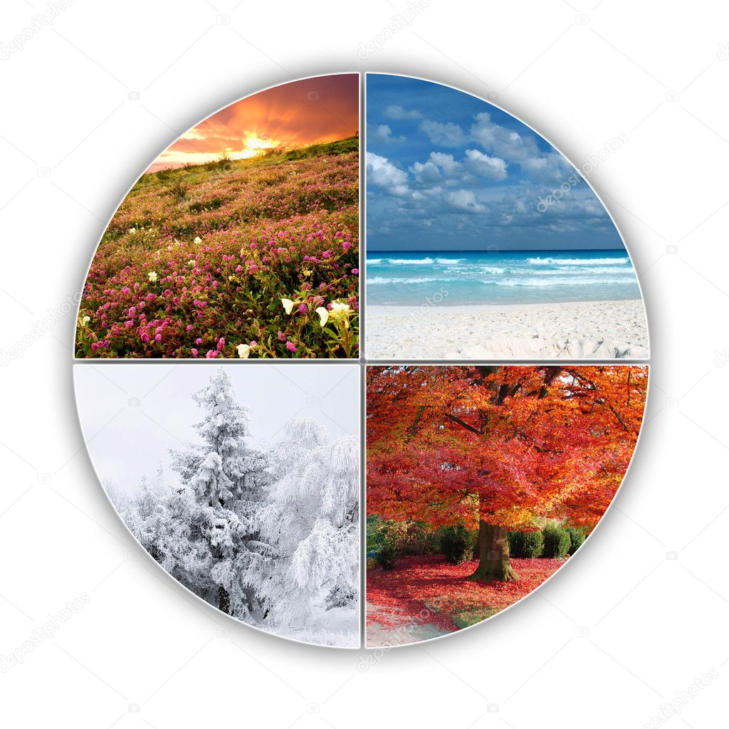 Four seasons of year on one picture — Stock Photo #1091486