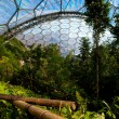 Stock Photo: Eden Project