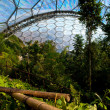 Eden Project — Stock Photo