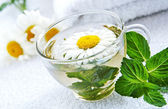 Cup of warm camomile-mint tea — Stock Photo