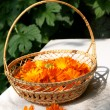 Royalty-Free Stock Photo: Bright fresh calendula flowers in a bask