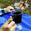 Hot mulled wine at picnic — Stock Photo #1032092