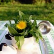 Edible weed plants in a small pot - Photo