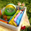 Bright multicolor summer picnic accessor — Stock Photo