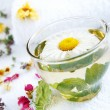 Camomile-mint herbal tea - Stock Photo