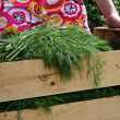A girl with new dill crop in a wooden bo - Stock Photo