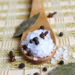 Wooden spoon with sesalt and black pep — Stock Photo #1033078