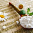 Wooden spoon with cottage cheese - Stock Photo