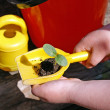 Eco-gardening with children — Stock Photo