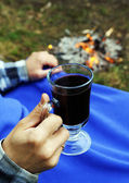Hot mulled wine at a picnic — Stock Photo