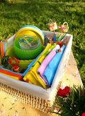 Bright multicolor summer picnic accessor — Stock Photo