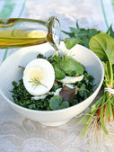 Spring weeda salad dressed with olive oi — Stock Photo