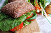 Healthy rye bread-tomato sandwich on a w — Stock Photo