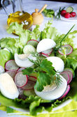 Healthy enrich summer vegetable salad — Stock Photo