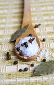 Wooden spoon with sea salt and black pep — Stock Photo