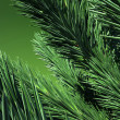 3D. Green Firtree — Stockfoto
