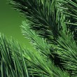 3D. Green Firtree — Foto Stock