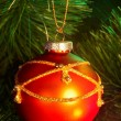Christmas red ball on  fir tree. — Lizenzfreies Foto