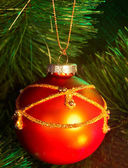 Christmas red ball on fir tree. — Stock Photo