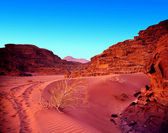 Sunset in jordan desert wadi rum. — Stock Photo