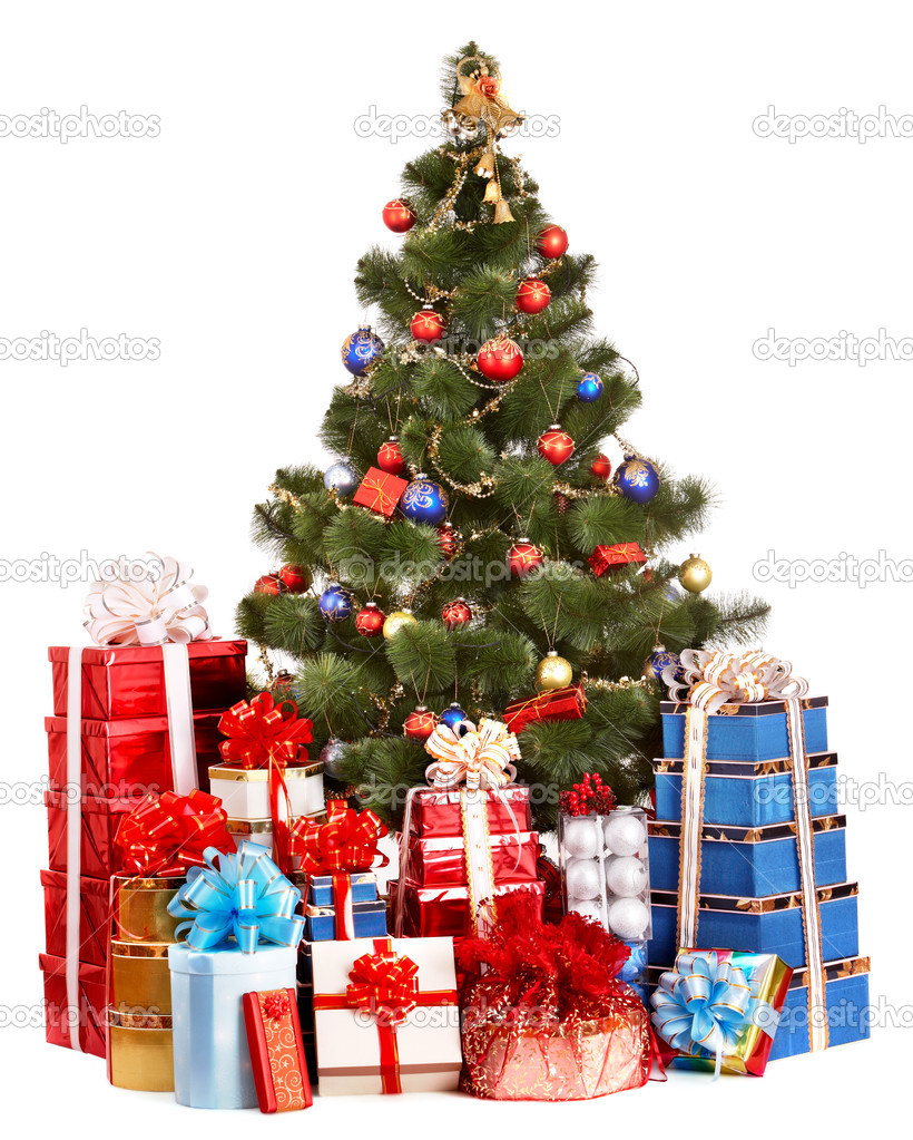 Christmas tree and group gift box. Isolated.  Stock Photo #1337633