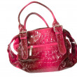 Stock Photo: Red female bag