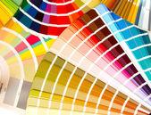 Welche farbe wählen? — Stockfoto