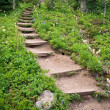 Stock Photo: Winding Steps